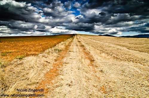 The Spanish meseta. Dark sky, bright field by Nicola Zingarelli