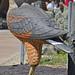 Daggett's Eagle (Buteogallus daggetti)
