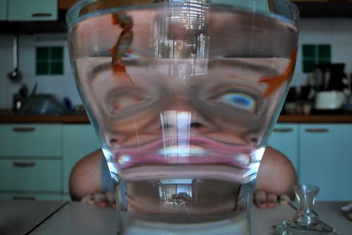 =) io, l'acqua e il vetro  by donatelladesanti