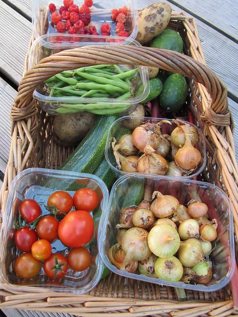 September harvest (1)