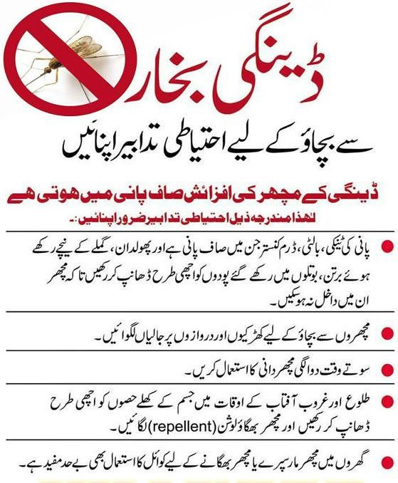 6149073215 a5eb059bca b Dengue Fever in Urdu: Symptoms, Treatment and Precautions