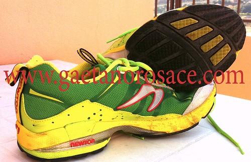 scarpe newton
