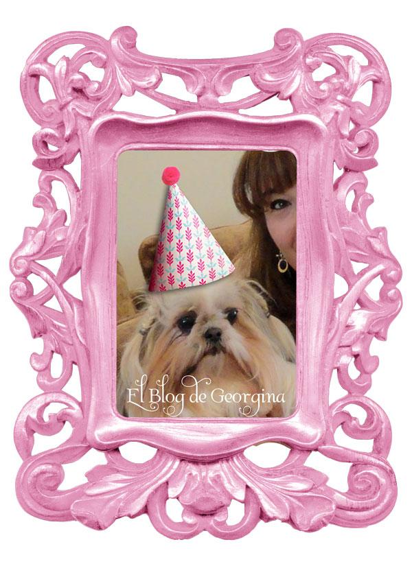 SORTEO 5to aniversario del blog
