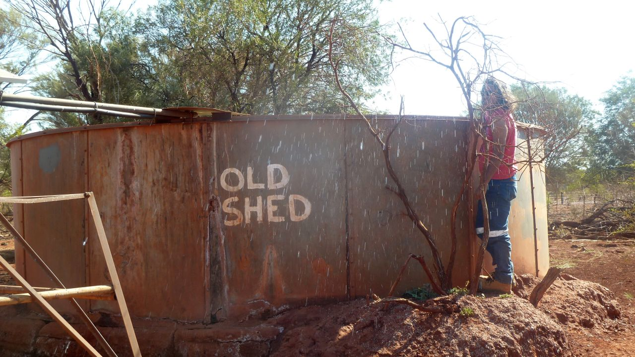 old shed 01