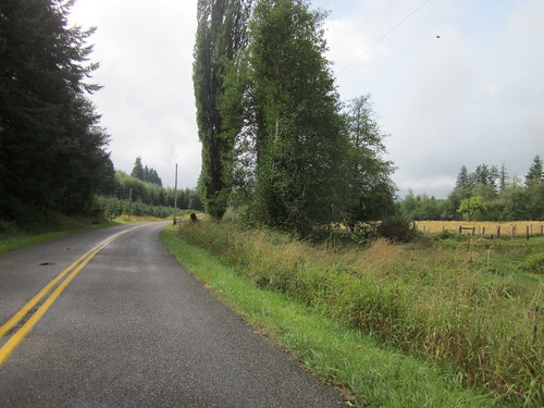 Cloquallum-Satsop Road