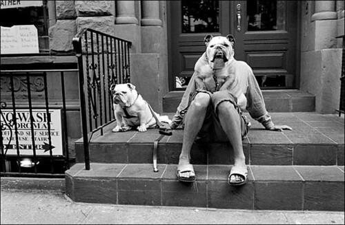 Elliott Erwitt, New York City, 2000