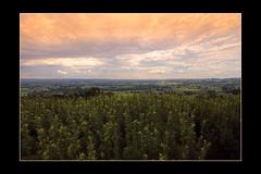 [Belgique - Belgium] (SergeK ) Tags: landscape soleil europe belgium belgique coucher paysage sergek 11sergek