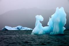 Prince William Sound, Alaska (Daleduro) Tags: alaska prince william sound icebergs