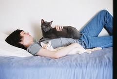 (Lauren Bost) Tags: blue boy orange white jason cute dusty film boyfriend cat bed kitten minolta sleep tabby gray stripe jeans 101 denim expired srt sooc
