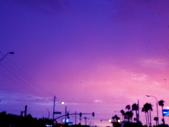 bp p (duh.denise) Tags: street pink sunset arizona sky rain dawn lights purple bokeh streetlights outoffocus palmtree raindrops aftertherain
