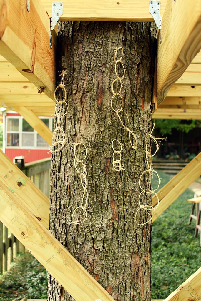 operation tree fort (the deck, part two)