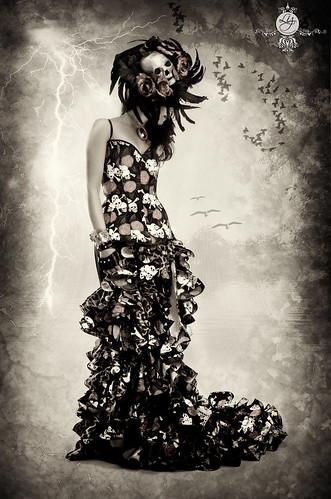 Dead Bride by Elizabeth Padilla