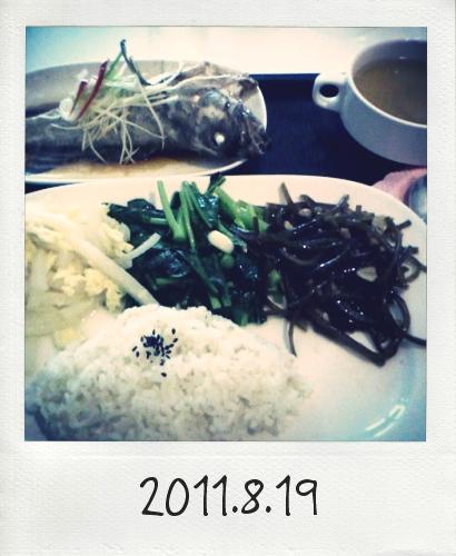 20110819_Photo Diet_1