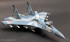 Su-27 Flanker TNI-AU (dm.miniatures) Tags: scale indonesia model modeling aircraft plastic kit 172 hasegawa sukhoi su27 tniau