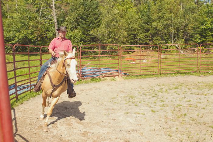 Halifax NS Wedding Portrait Horse Equine photography - Splash & Donna - Nicole Payzant -  (12 of 26)
