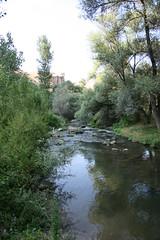 Ihlara (12) (mauro belardi) Tags: turkey cappadocia turchia salix ihlara salici chieserupestri