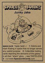 Space Junk!™ P1 Back