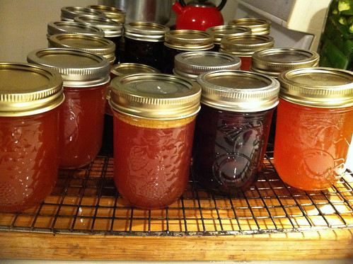 Preserving Plum, Peach and Nectarine Juice (Concentrate or Cordial) Preserving Recipes Plum Peach Nectarine