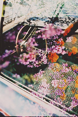 (Džesika Devic) Tags: old flowers film car canon exposure ae1 double dodge