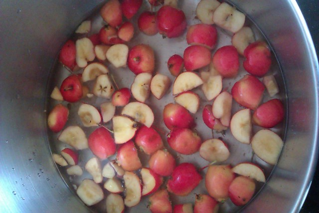 Chopped crab apples floating in a pot of water
