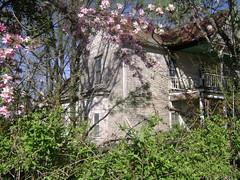 side of old harmon house (AbandonedRoadFilms) Tags: house abandoned plantation