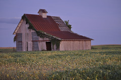 Tin Roof Rusted (jayfowler2) Tags: fall illinois farm harvest oldbarn tinroofrusted