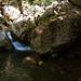 2008 08 29 - 7176 - Crimea - Mountain Stream