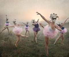 Masquerade (Leah Johnston) Tags: morning ballet mist misty les painting dawn dance ballerina novascotia leah fineart masks masquerade portfolio halifax truro tutu johnston tutus brumes canon5dmkii leahjohnston leahjohnstonphotography shubanacadie