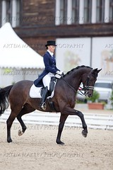 IMG_0059 (White Bear) Tags: horses horse animals sport russia equestrian artem dressage        makeev      equene