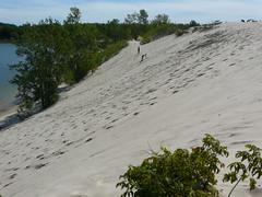 P1260753 (DJPhilton) Tags: park sandbanks provincial sandbanksprovincialpark