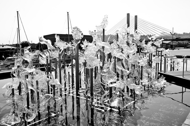 Museum of Glass- MOG Tacoma