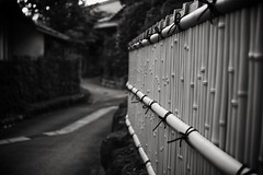 bamboo fence, Motosu, Japan (StephenCairns) Tags: shadow blackandwhite bw lines rock rural fence dark mood tie rope knot bamboo explore sombre hedge  tied neighbourhood   rockfence   converginglines   ruraljapan  30mmsigmaf14 fauxbamboo canon50d