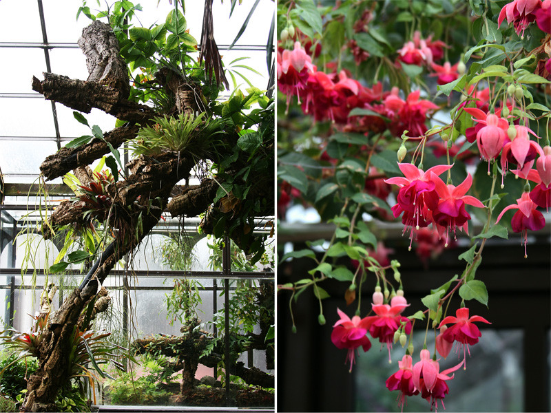 Botanic Gardens0