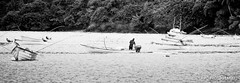 Island life (RMCphotos) Tags: bw white fish black classic beach rural america work print island boat photo nikon flickr tour village south country hard award trinidad tropic caribbean epic tobago 2012 2010 charlotteville 55200 2011 d5000 rmcphotography