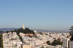Coit in the distance