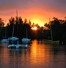 ~~BigIslandSunrise/Hawaii #1~~ (TravelsThruTheUniverse) Tags: hawaii niceshot hilo thebigisland tropicallandscape tropicallagoon colorphotoaward 100commentgroup rainforestink mygearandme hawaiisunsetsunrise tropicalsunrisesunset flickrstruereflection1