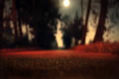... tradimenti e sussurri fra gelosie notturne ...whispers of treachery and jealousy between night ... (UBU ) Tags: blue red blu blues bleu dreams rosso notte bluemoon vigevano blunotte bluprofondo blulontano sognodiunanottedimezzaestate nophotoshopnolsd sailsevenseas ubu unamusicaintesta blurassegnazione landscapeinblues bluubu blumelancolia bluusato luciombreepiccolicristalli blurubato oltre25secondidesposizione