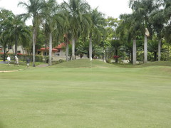 WAIKELE COUNTRY CLUB 258