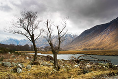 Etive in Colour (GaryHowells) Tags: scotland lochetive