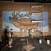 Living Walls (The Elk) - Albany, NY - 2011, Sep - 01.jpg by sebastien.barre