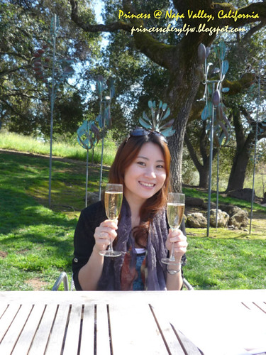 Domaine Chandon Napa Valley 19