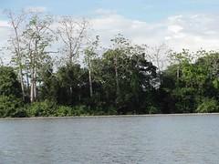 Passeando pelo rio Tapajs - Itaituba, PA (Wilmar Santin) Tags: amazon paisagem par amazonia amazonie amazzonia tapajs ribeirinha amazonien itaituba riotapajs paisagemamaznica paisagemribeirinha paisagemamazonica paisagemribeirinhaamaznica