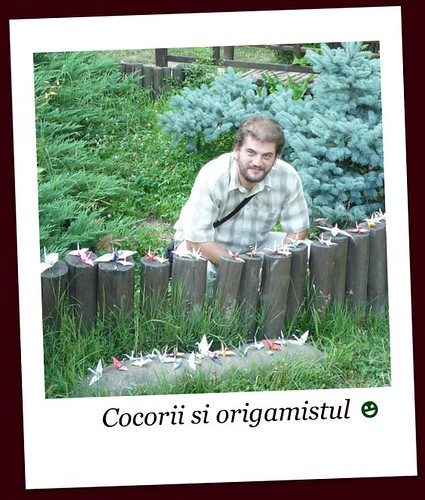 Cocorii si origamistul by Bogdan Petcu
