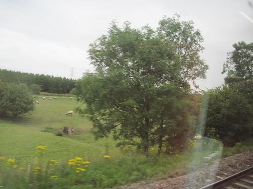 Traveling Through England