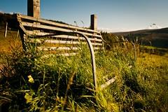 Wait to be seated (MoreThanOneView) Tags: plant grass weather metal architecture bench scotland europa unitedkingdom pflanze wiese himmel bank material gras 24mm landschaft metall wetter tomintoul schottland cairngorm hbm stadtmbel grnpflanze grosbritannien meadowgrassland