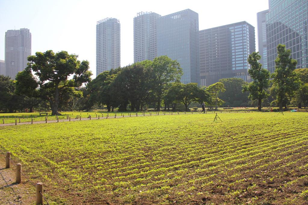A walking guide of Hamamatsucho  (3)