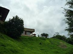 Boquete/Caldera, Panama (kenzilicious) Tags: coffee caldera plantation boquete panama cloudforest centralamerica coffeebean chiriqui kotowa ranchodecaldera