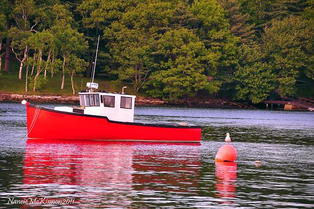 BoatandSeagullDSC_0185.jpg