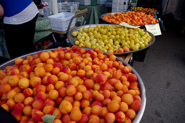 Apricots at Trout Lake Farmers Market