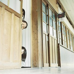 *back to the SCHOOL #12 (fangchun15) Tags: school fiction 120 6x6 mamiya tlr c220 film japan kodak memory gunman portra800